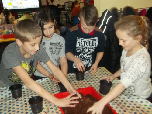 Reece, Bethany, Charlie and Phoebe have fun with the soil_